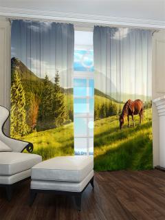 Фотошторы «Лошадь» арт. S30556 H260