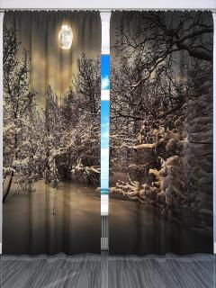 Фотошторы «Зимняя ночь» арт. S2310 H260